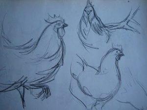 Gallos-experimentando-el-dibujo-i-ii-iii-L-PIk9Ux